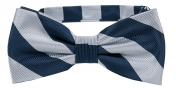 Striped Bow Tie Navy | Silver