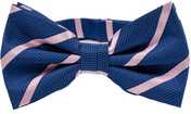 Blue Bow Tie Pink Stripes